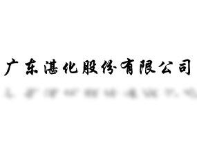广东湛化股份有限公司