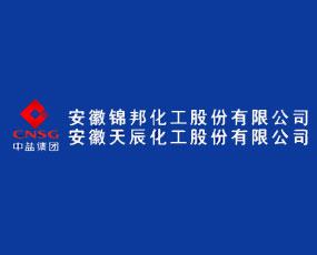 安徽锦邦化工股份有限公司