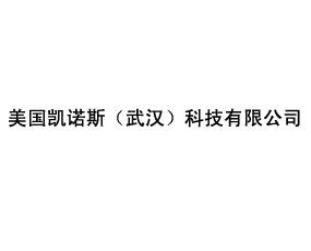 美国凯诺斯(武汉)科技有限公司