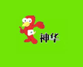 河北神华药业有限公司