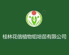 桂林花信植物化工有限责任公司
