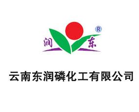 云南东润磷化工有限公司