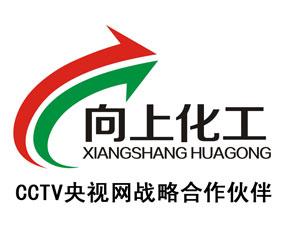 郑州向上化工有限公司
