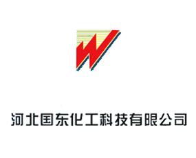河北国东化工科技有限公司