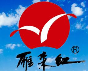 山东省滨州雁来红生物工程有限公司