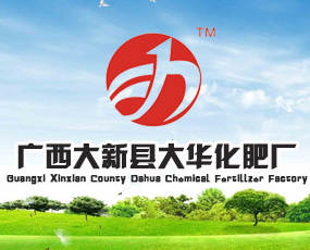 广西大新县大华化肥厂