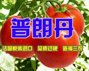 青岛伊诺克肥料有限公司