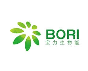山东宝力生物质能源股份有限公司