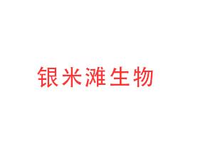 黑龙江银米滩生物科技有限公司