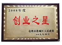 2008年度创业之星