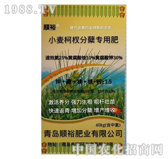 小麦柯杈分蘖专用肥-益生源