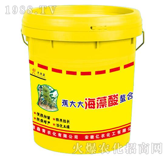 海藻酸螯合肥-蕉大大-森青