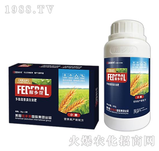 小麦多肽氨基蛋白液肥-稼多帮