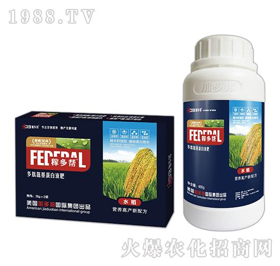 水稻多肽氨基蛋白液肥-稼多帮
