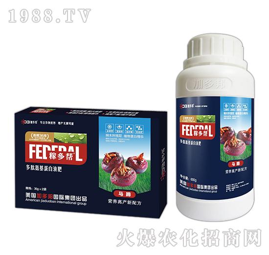 马蹄多肽氨基蛋白液肥-稼多帮