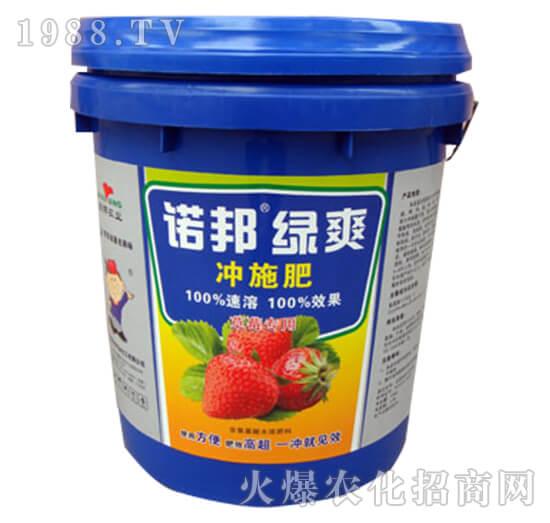 诺邦绿爽冲施肥-草莓专用-陕西诺邦
