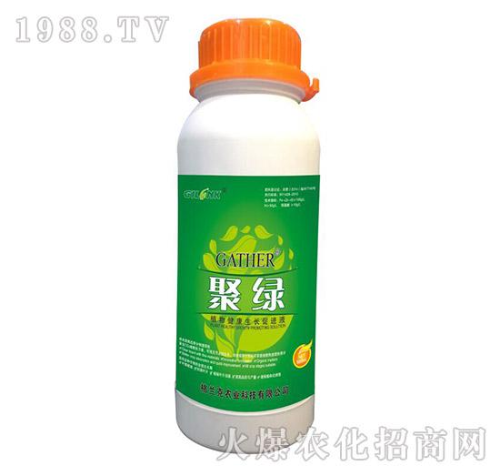 聚绿-植物健康生长促进液(500ml)-格兰克