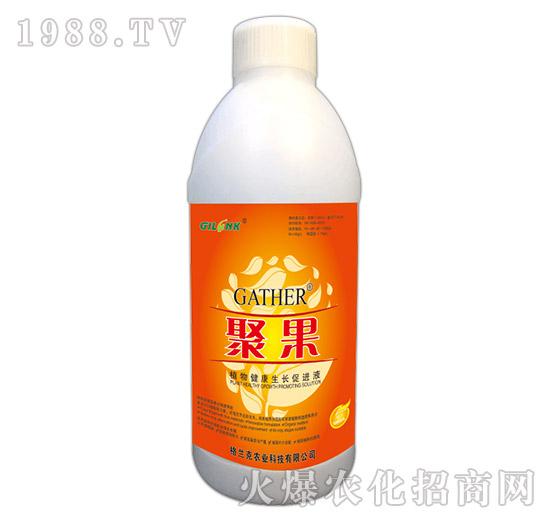 聚果-植物健康生长促进液(1000ml)-格兰克