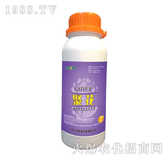 聚花-植物健康生长促进液(500ml)-格兰克