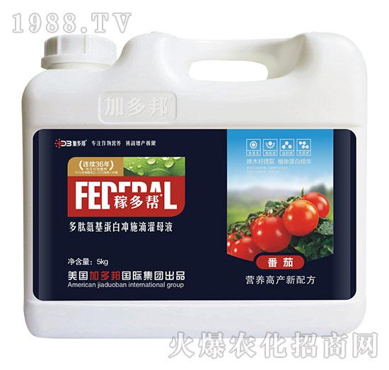 番茄多肽氨基蛋白冲施滴灌母液-稼多帮