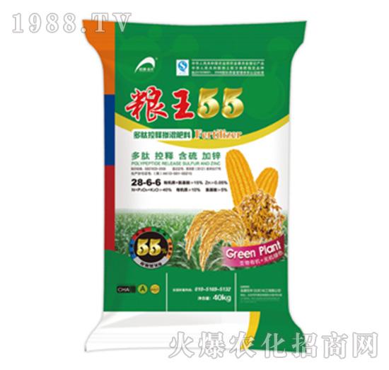 多肽控释掺混肥28-6-6-粮王55-艾农生物