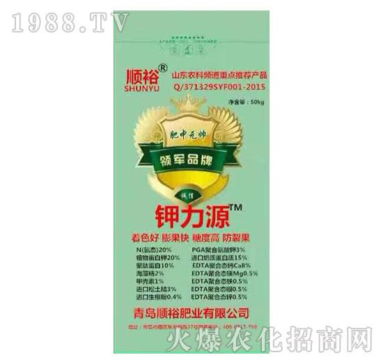 钾力源-中农国控