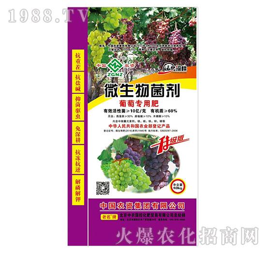 微生物菌剂-葡萄专用肥-中农国控