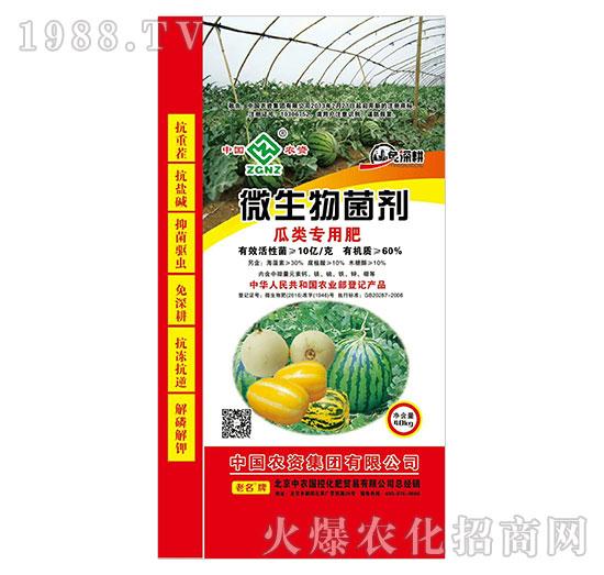 微生物菌剂-瓜类专用肥-中农国控