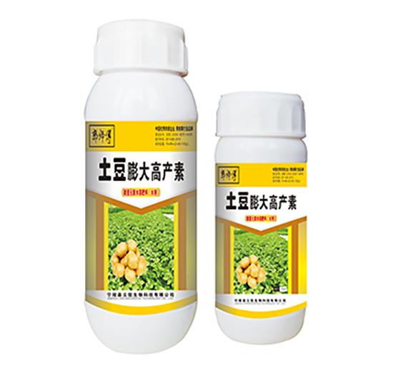 土豆膨大高产素-郭师傅-立信生物