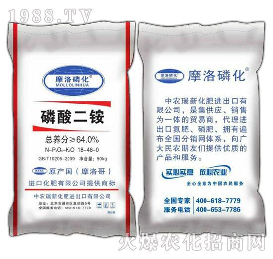 磷酸二铵-摩洛磷化-盛高肥业