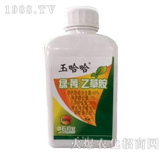 40%绿莠乙草胺-玉哈哈-中石