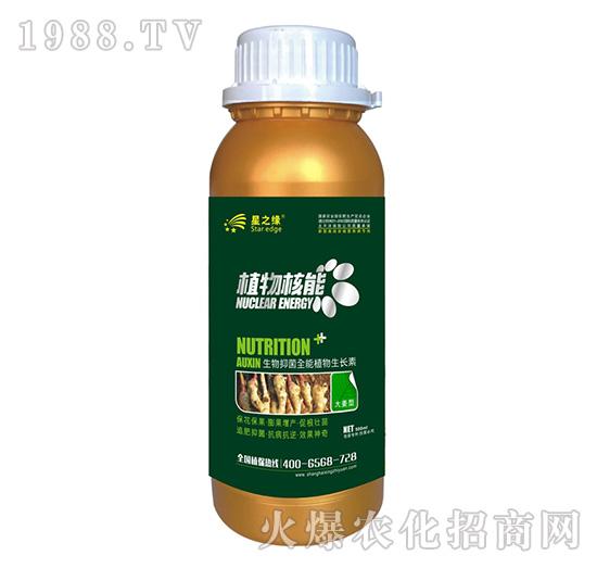大姜型-植物核能300ml-星之�