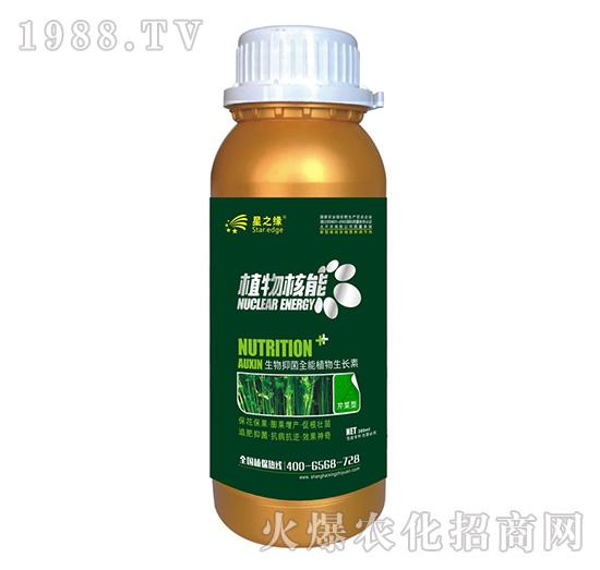 芹菜型-植物核能300ml-星之�