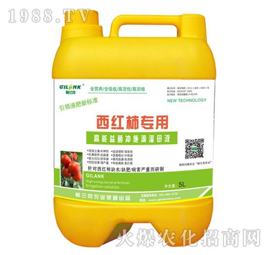 西红柿专用高能益菌冲施滴灌母液-格兰克