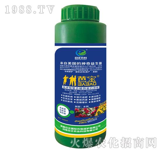 花卉专用-高浓缩螯合植物蛋白液肥-日正农科
