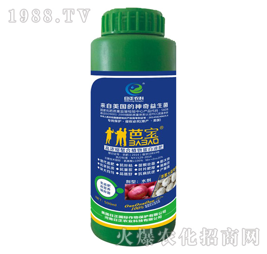 洋葱大蒜专用-高浓缩螯合植物蛋白液肥-日正农科