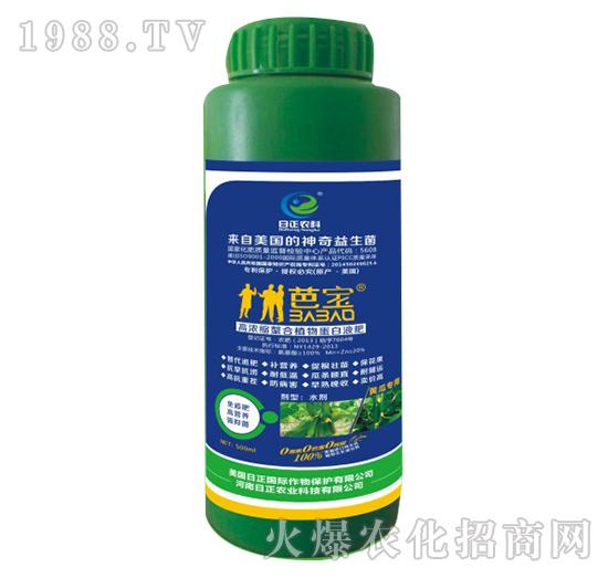 黄瓜专用-高浓缩螯合植物蛋白液肥-日正农科