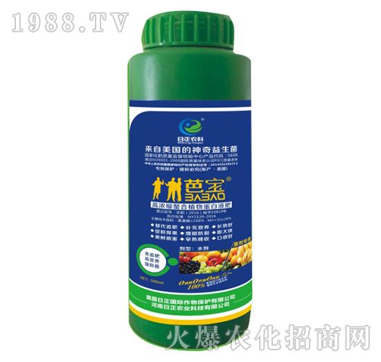 果树专用-高浓缩螯合植物蛋白液肥-日正农科