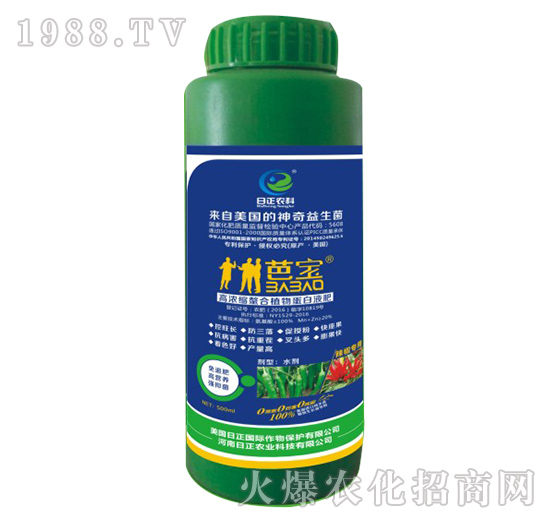 辣椒专用-高浓缩螯合植物蛋白液肥-日正农科