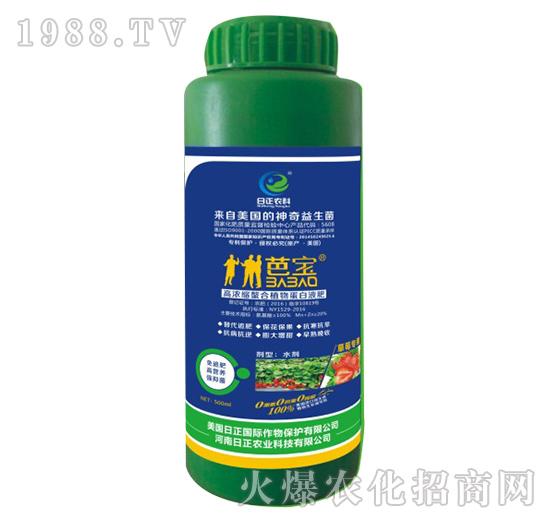 草莓专用-高浓缩螯合植物蛋白液肥-日正农科