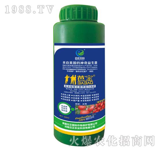 番茄专用-高浓缩螯合植物蛋白液肥-日正农科