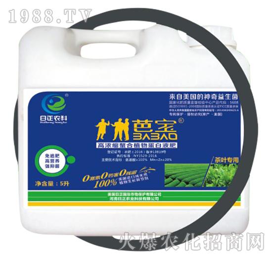 茶叶专用(桶)-高浓缩螯合植物蛋白液肥-日正农科