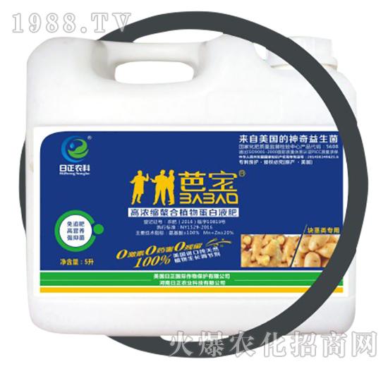 块茎类专用(桶)-高浓缩螯合植物蛋白液肥-日正农科