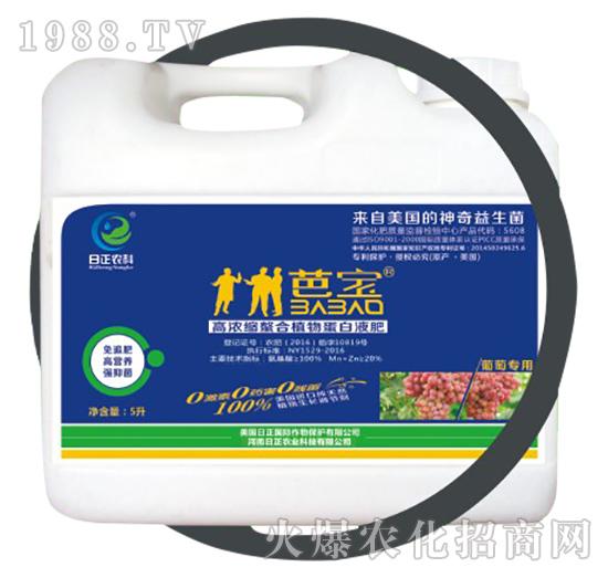 葡萄专用(桶)-高浓缩螯合植物蛋白液肥-日正农科