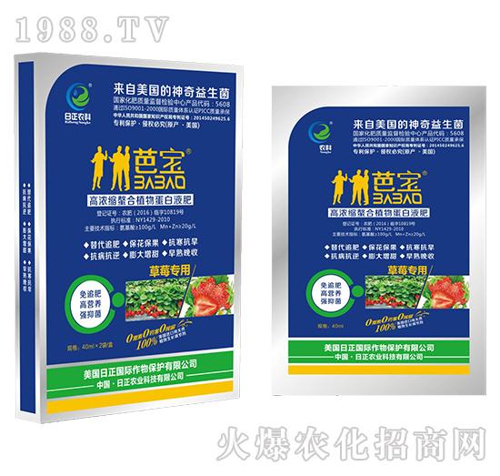 草莓专用(袋)-高浓缩螯合植物蛋白液肥-日正农科