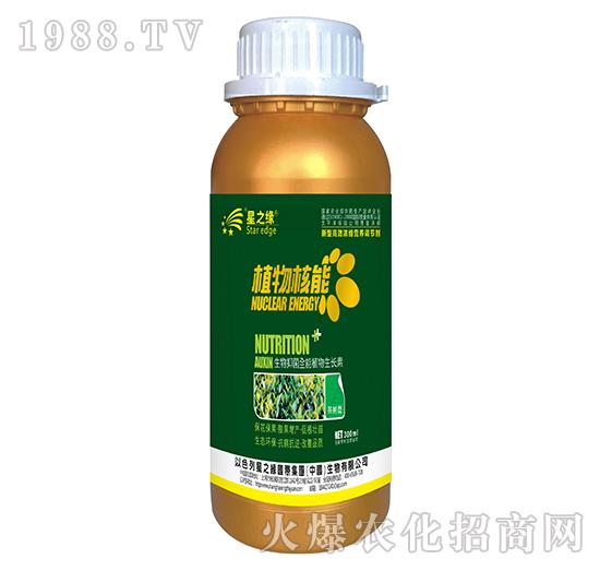 茶�湫�-植物核能300ml-星之�