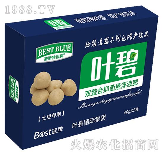 土豆�S�-�~碧-碧斯特