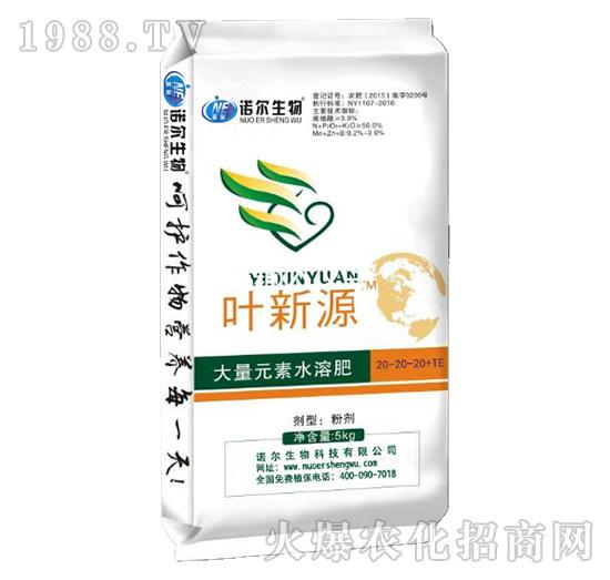 叶新源含腐植酸水溶肥20-20-20+TE-诺尔生物