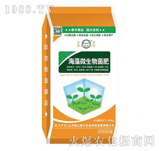 海藻微生物菌肥-梁山泰丰