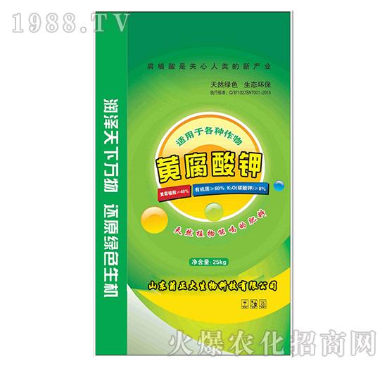 黄腐酸钾-菌正大
